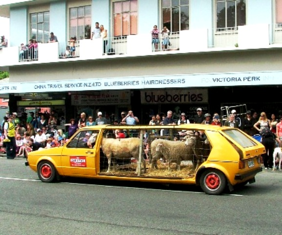 Find a Sheep Limousine by using the searh box above